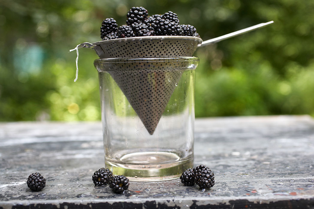 Marx-food-photography-blackberries.jpg